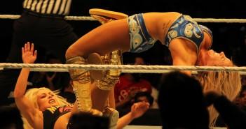 WWE 25